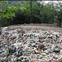 چالش های معدن کاوی برای جنگل های هیرکانی